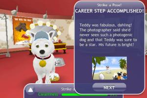 Dogs_career